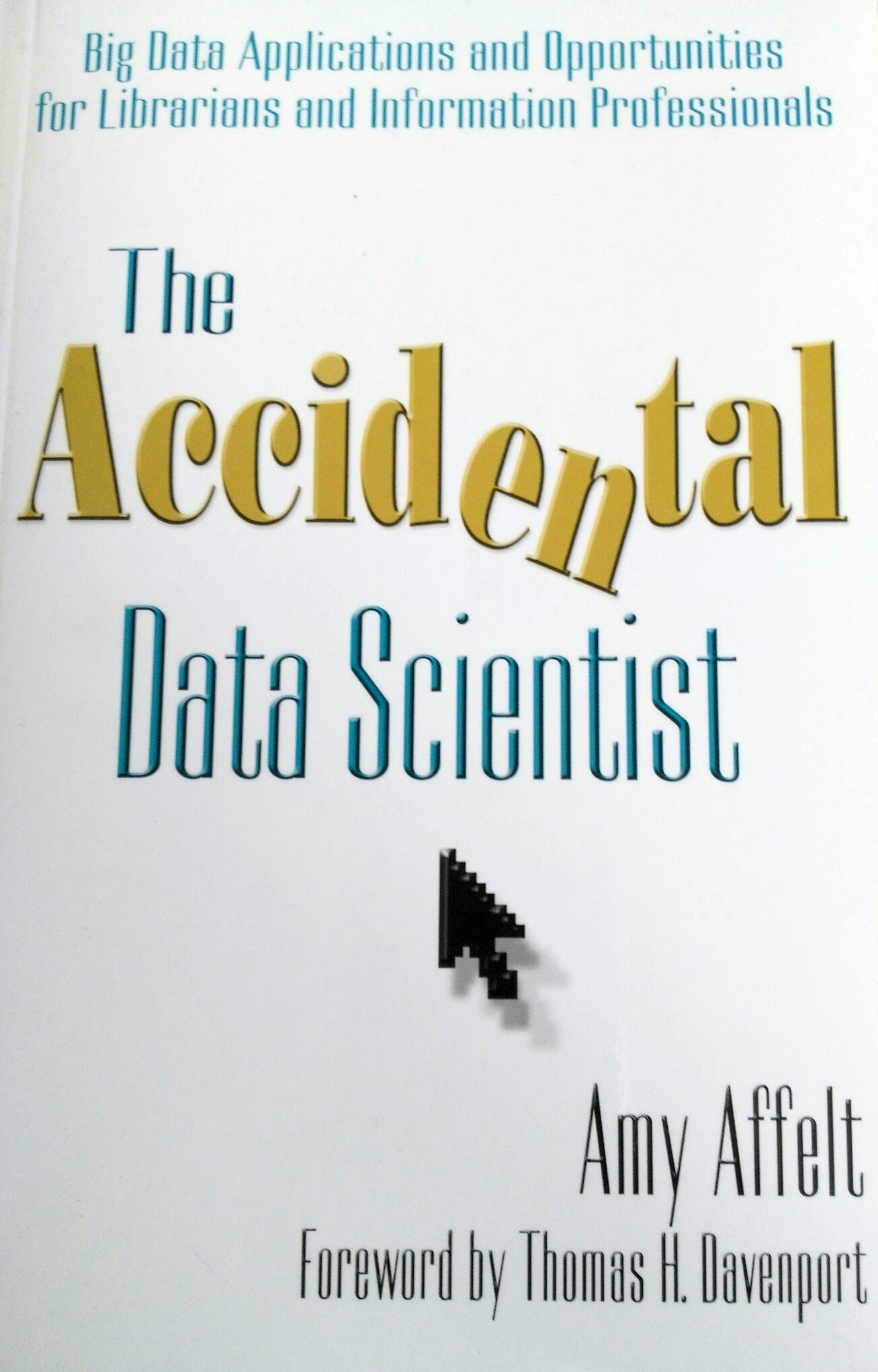 Image of book cover 'The Accidental Data Scientist' by Amy Affelt